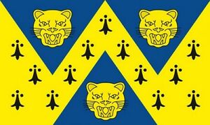 SHROPSHIRE-NEW-DESIGN-5-X-3-FEET-FLAG-polyester-fabric-SHREWSBURY-TELFORD