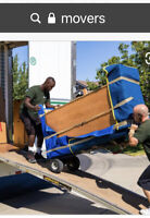 Looking for Movers in Pictou County