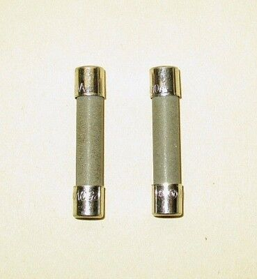 Two Lincoln 369014 Fuses 10 Amp Impinger Impinger Ii Commercial Conveyor Oven