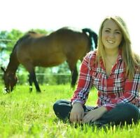 D'Arcy Lane Equine Massage Therapy Student - Horse to Treat