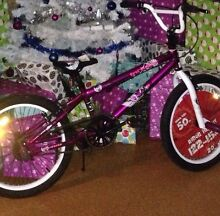 STOLEN BIKE Millers Forest Maitland Area Preview