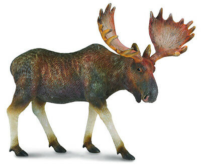 *BRAND NEW* MOOSE MODEL by COLLECTA 88335 *FREE POSTAGE*