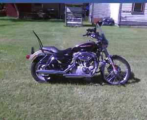2007 sportster for sale