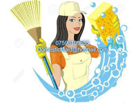 Domestic Maid Cleaning Company