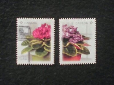 Canada 2010 African violets used pair