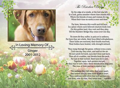 A4 Personalised Pet Memorial Photo The Rainbow Bridge Poem