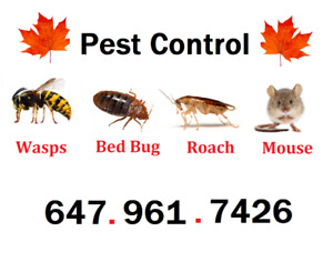 BED BUGS? ROACHES? PESTS? 647 961 7426
