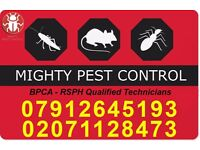 Pest Control-Getting rid of Bedbugs|Ants|Cockroaches|Mice in Leytonstone|Wanstead|Chingford|Woodford