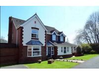 Beautiful 5-6 bedroom house for sale, Somerset