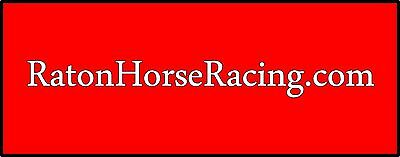 Ratonhorseracing Com   Domain Name Registered With Godaddy Com