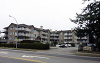 Welcome to Hanna Estate 32120 Peardonville Rd., Abbotsford, BC