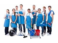 DEPENDABLE CLEANERS, IRONING, GARDENING