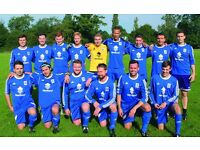 St Albans (Hertfordshire) Sunday league football team (men's) – players wanted