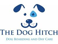 Dog Home Boarding and Day Care
