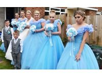 I have 5 cinderlla bridesmaides dresses with hoop in good condition