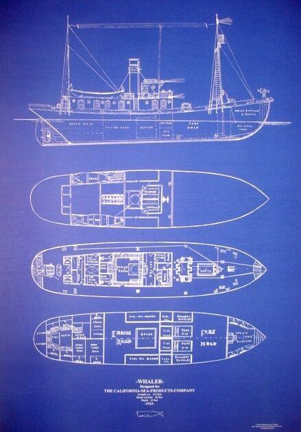 "Ships Plan California Whale Hunting Ship Blueprint Drawing 1923 24""x34"" (043)"