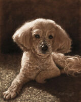Pet Portraits by Award Wining Artist Colette Theriault