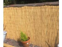New unused Bamboo Fencing