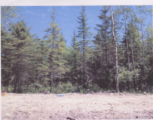 Fully treed lot for sale in north gimli estates