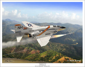 VF-114 Aardvarks F-4 Phantom II Aviation Art Print
