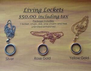 Living Lockets--Like Origami Owl!