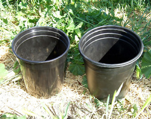 looking for Plant Pots, a variety of sizes