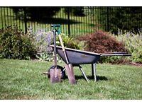 Garden Tidy ups ...grass cutting service ...garden handyman