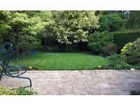 SunnySide Gardeners Gardening / Landscaping Services
