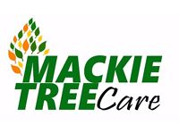"""Mackie Tree Care """"professional tree surgery with a smile"""""""