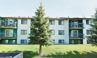 Eldor Place - 1 Bedroom Suite Available - Brooks