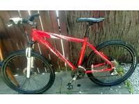 Bargain ! Coyote Mountain Bike