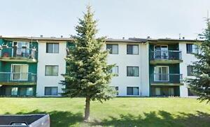 One Bedroom Unit - Eldor Apartments