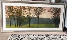 Large landscape framed trees picture/print