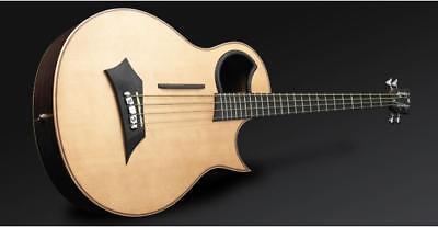 Warwick Alien 4-String Acoustic Electric Bass Guitar Fishman Prefix PlusT w/case