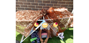 School holiday care Harrison Gungahlin Area Preview