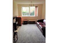 1 bedroom flat in 28 Dobbin Hill, Sheffield, S11