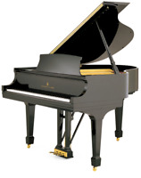   Piano and Theory Lessons from Experienced and Qualified Teac