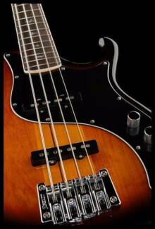 Bassist Wanted Brisbane City Brisbane North West Preview