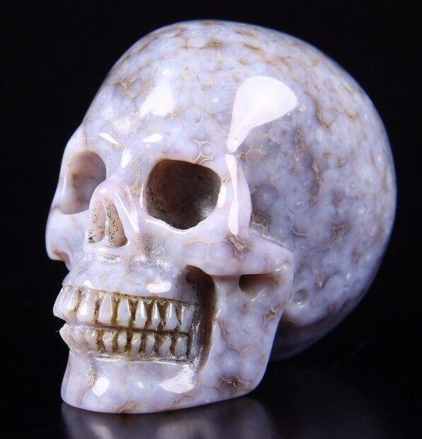 "2.1"" PURPLE GRAPE AGATE Carved Crystal Skull, Realistic, Crystal Healing #338"