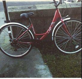 Apollo Cafe Bike Red