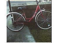 Apollo Cafe Bike Red