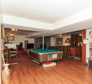 Commercial 4x8 Billiard Table