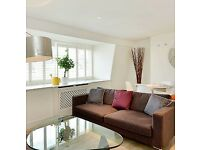 Stunning 1 Bedroom Apartment in Fabulous Area of Chelsea