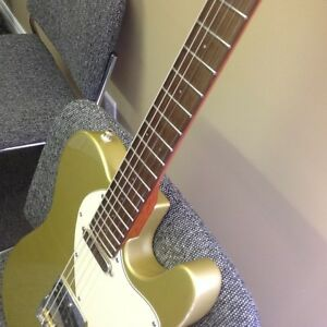 USACG thinline telecaster, Brazilian rosewood board fat neck