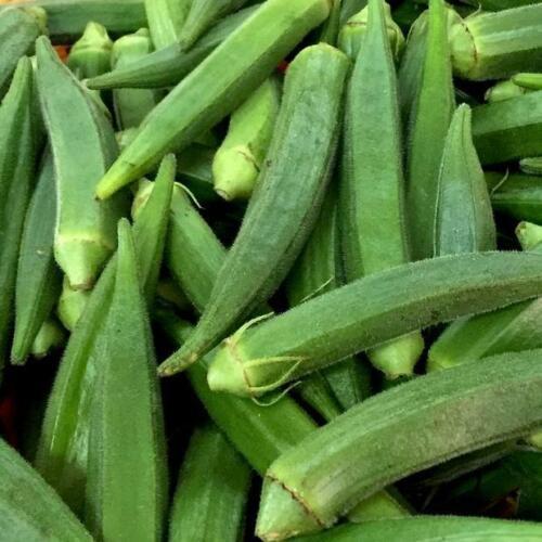 Okra Clemson Spineless Seeds 50 Ct Vegetable NON-GMO USA SELLER FREE SHIPPING