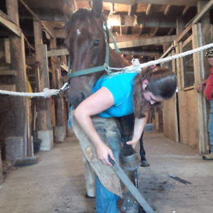 Carolyn's Farrier services
