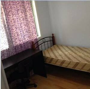 single room at Sunnybank hills for short term rent, close to bus Sunnybank Hills Brisbane South West Preview