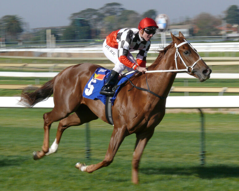 Facts and Figures of the Melbourne Autumn Racing Carnival