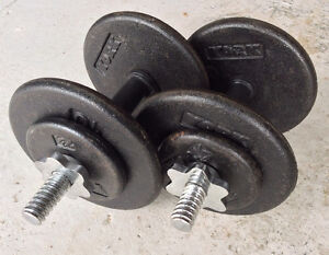 A pair of 25 lbs cast iron dumbbells (total 50 lbs) $45