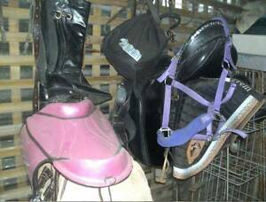 Saddle, helmet, saddle pad, boots, halter, ect horse gear Cooroibah Noosa Area Preview